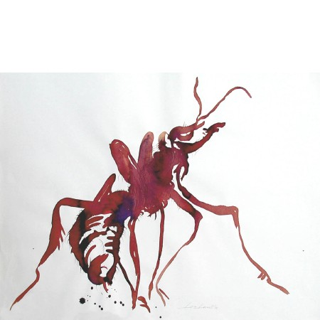 Attacking Ant, 1997. 50 x 65 cm.