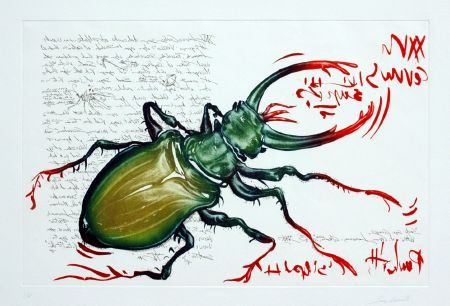 4 Insetti — the Stag Beetle (1994). Coloured mezzotint and etching, plate 32 x 50 cm (foglio 50 x 65 cm).